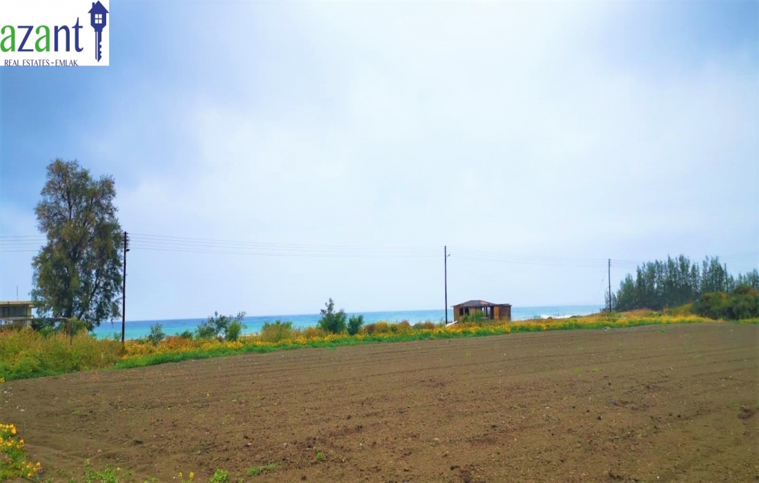 LAND WITH SEA VIEW IN CENGIZKOY